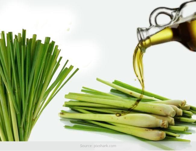 Benefits-of-Lemongrass-Oil-on-Skin1