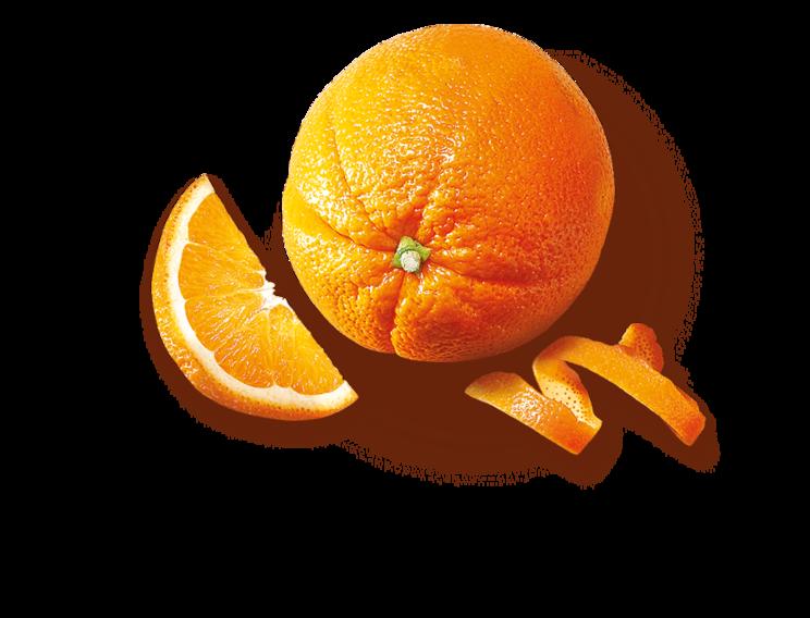 pomerancova_kura1c