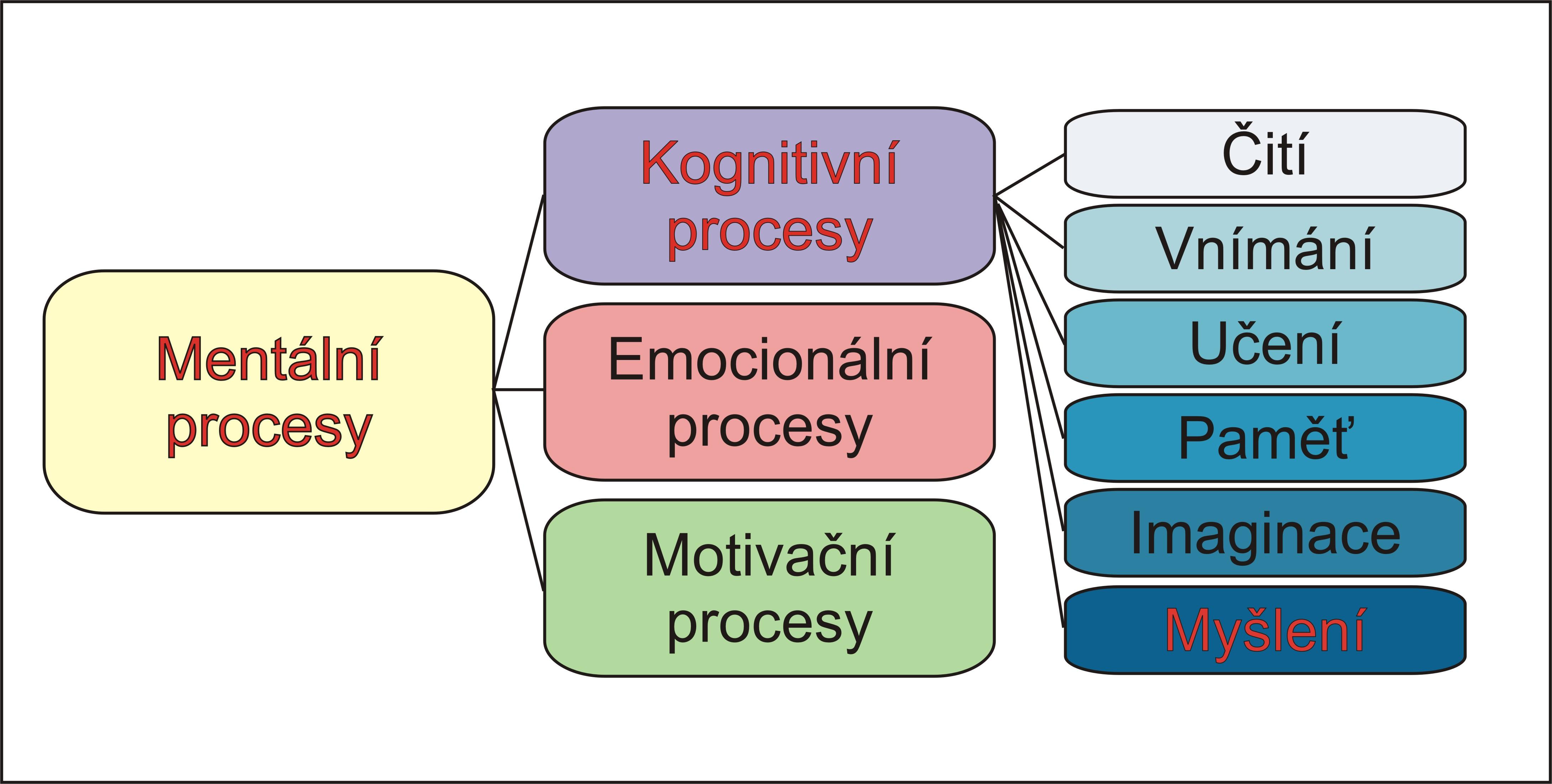 schema11